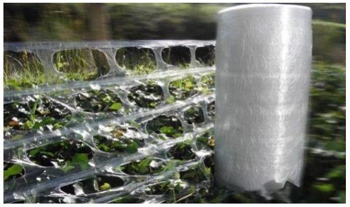 film macro perforé bobine manuel plante végétaux
