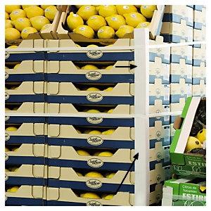 CORNIERE CARTON PROTECTION PALETTE légumes et fruits